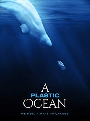 A Plastic Ocean Movie Sceening
